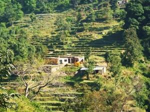 Maadal, Bhoj Balag, Morni hills