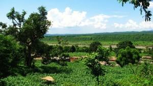 Bharal, Thapli panchayat