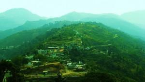 Bhoj Jabyal