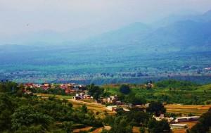 Bhoj Matour