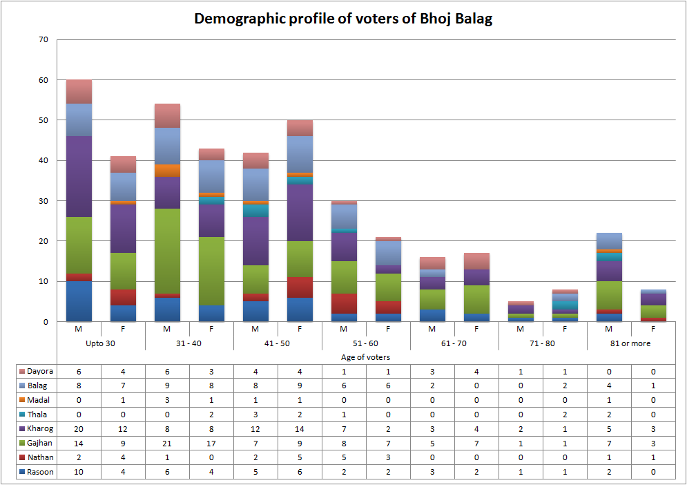 Demographic profile of voters of Bhoj Balag- Graphical