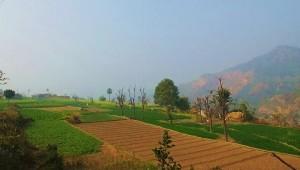 Sher Gujran, Bhoj Ponta, Morni Hills