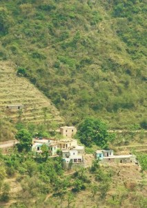 Badiyal, Thandog panchayat, Morni hills