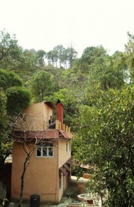 Cottage, Thandog-Kohlan road, Morni hills