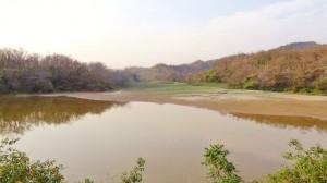 Dam at Dullopur