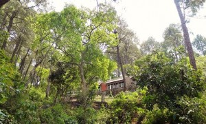 rest lodge, Thandog-Kohlan road, Morni hills