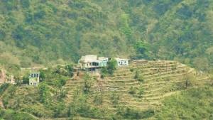 Thana, Thandog panchayat, Morni hills