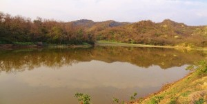 Water Harvesting Dam at Dullopur, Morni foothills