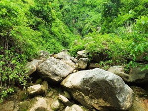 A road less travelled- the way to waterfall