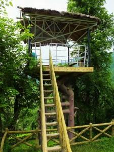 Machaan at Adventure Park, Morni