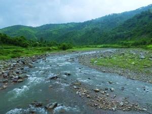 Clear waters of Ghaggar at Chhamla