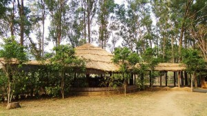Dining area with thatched roof (Gol Ghar), Nature Camp Thapli