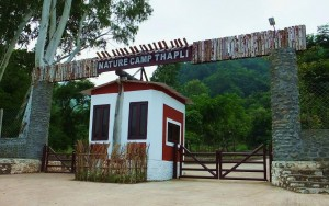 Entrance Gate, Nature Camp Thapli
