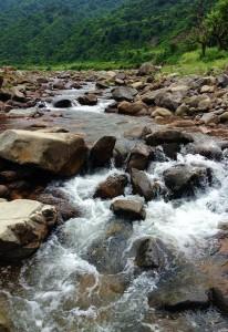 Gushing white waters of Ghaggar River at Chhamla, Morni hills