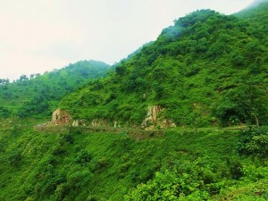 Picturesque Chhamla-Dhaman-Thapli road