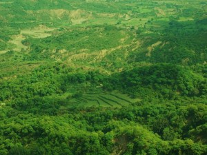 View of forested valley and terraced fields from Mandhana cliff-top