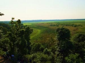 Jhilmil Jheel Conservation Reserve- the beautiful landscape
