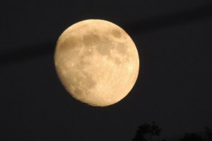 Moon at Benog (Photo courtesy the Scribe)