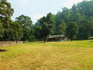 Restored Forest Bungalow at Mithawali, Chilla forest range