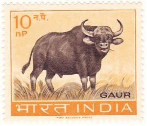 Gaur- Commemorative Postal Stamp  (7th October 1963)