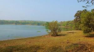 Taroba lake, Taroba-Andhari Tiger Reserve