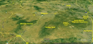 Aravali Forests of Delhi and Haryana