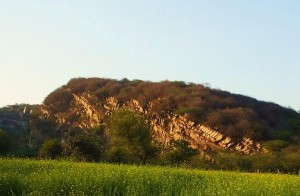 Aravalis- Bhondsi-Gamroj (Hill side reveals scars of mining)