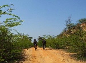 Cyclists at Asola-Bhatti Wildlife Sanctuary