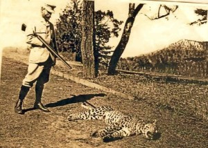 Arthur Ross Wilson, Esquire (1848-1923) posing with leopard kill, Binsar Forest Photo courtesy Nicholas Wilson