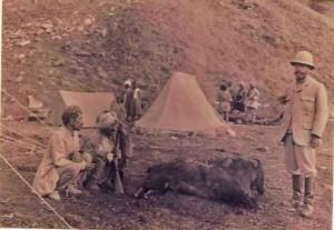 Arthur Ross Wilson, Esquire (1848-1923) with wild boar kill, Binsar Forest Photo courtesy Nicholas Wilson