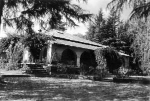 Khali Estate, Binsar, Almora (2007)