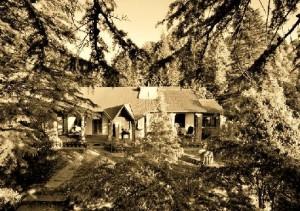 Mary Budden Estate, Binsar, Almora