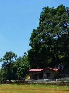 Post near the Bineshwar Mahadev Temple, Binsar WLS